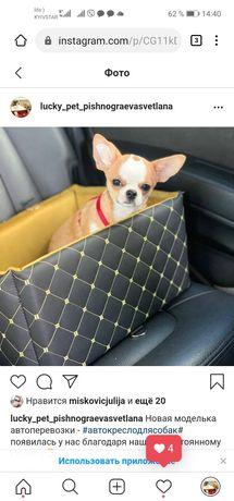 Автокресло для собачек кресло для собаки в машину шпицу чихуахуа