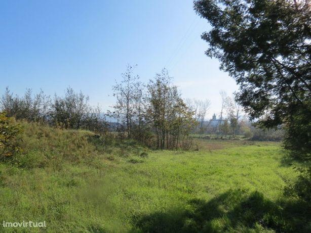 Arrenda-se Terreno Agrícola - Braga