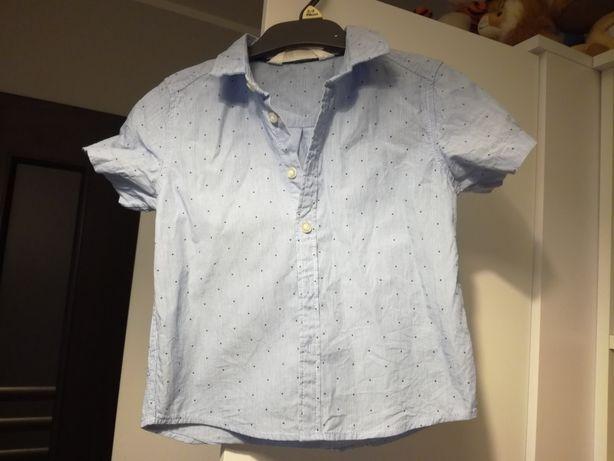 Koszula h&m, krótki rękaw