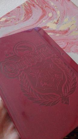 Notebook de Harry Potter (Quidditch) - NOVO