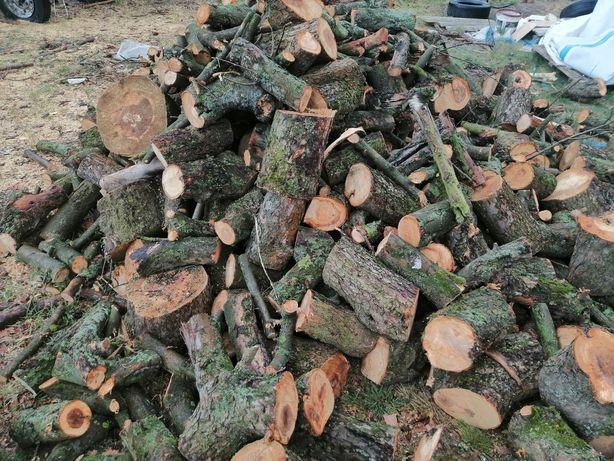 Drewno do kominka i na opał liściaste twarde. Dowoz Wroclaw i okolice