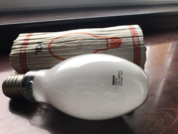 Żarówka /lampa/ HQL - 250 W - OSRAM