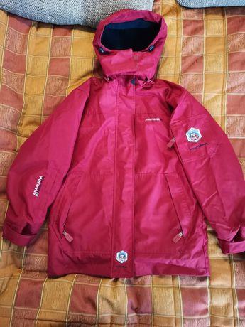 Куртка мужская, парка, зимняя Anapurna