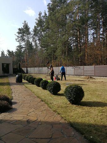 Аэрация и скарификация газона.Комплексные услуги садовника.