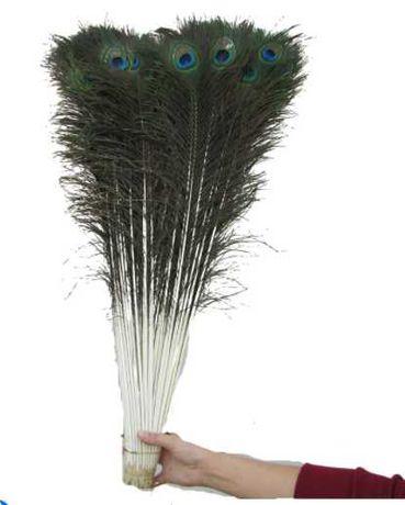 10 sztuk naturalne pióra pawie 70-80 cm DŁUGIE
