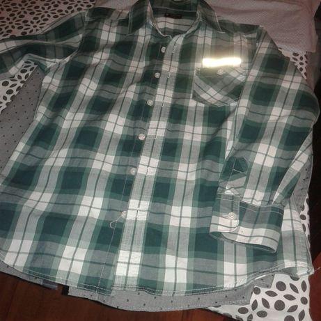 Koszula chłopieca