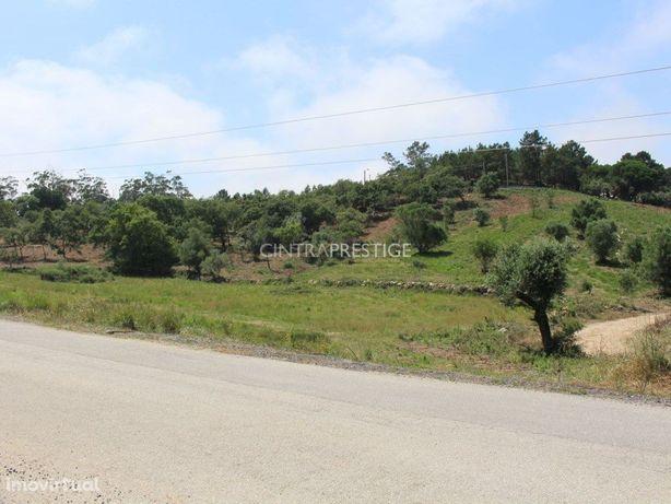 Terreno para arrendamento com 2ha em Almornos - Sintra