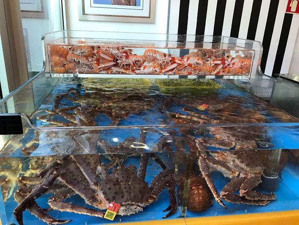 Vendo aquário para marisco