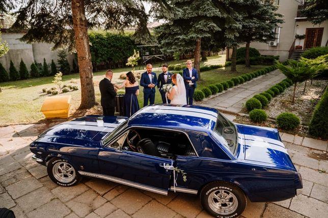 Auto do ślubu - wynajem - klasyk Mustang GT V8 1966