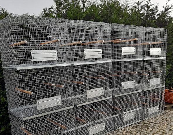 Blocos de gaiolas para aves Bico Curvo