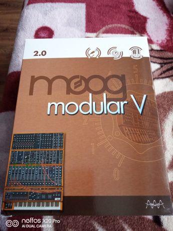 Arturia Modular  Moog V syntezator wirtualny