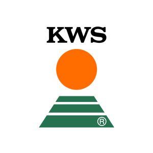 Nasiona kukurydza KWS Kampinos, Kentos ,Kidemos, Amavit. NOWOŚĆ