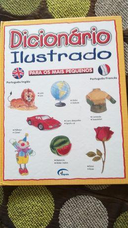 Dicionário Ilustrado port/inglês e port/francês