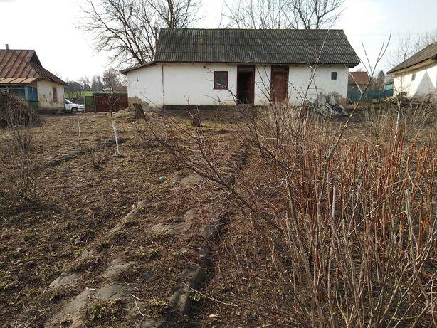 Продам будинок з ділянкою  та молодим садом