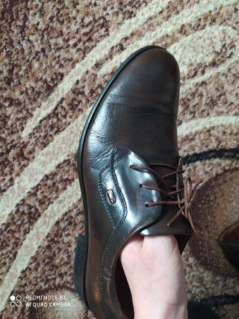 Чоловічі туфлі коричневого кольору