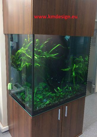 Projektowanie Zakładanie Serwis Modernizacja oraz Opieka nad Akwarium