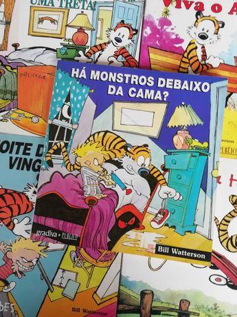 Coleção Livros Calvin & Hobbes