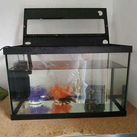 Aquario em vidro