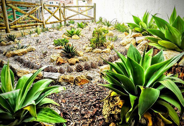 Um jardim no paraíso