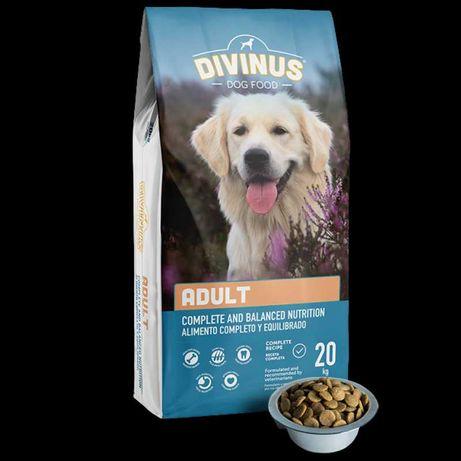 karma DIVINUS ADULT dla psów dorosłych 20KG wysyłka gratis
