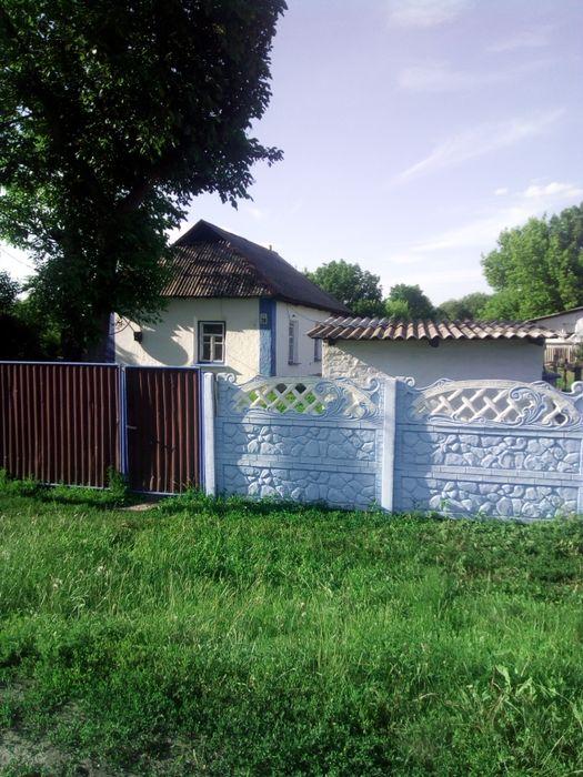 Продам будинок . Долинка - изображение 1