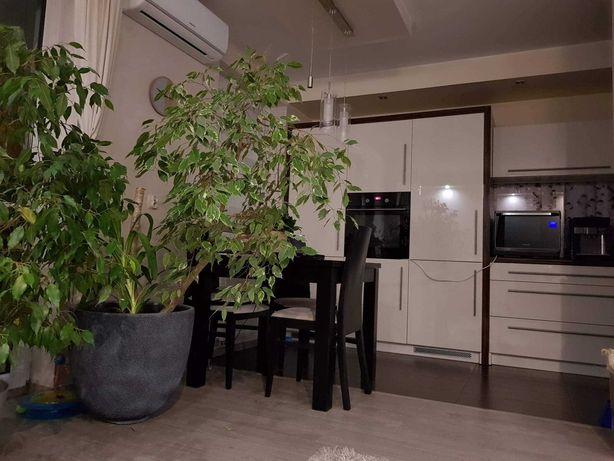 Wynajmę Mieszkanie 64 m2 wysoki standard Siedlce osiedle Partyzantów