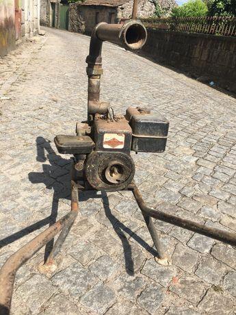 motor rega briggs stratton