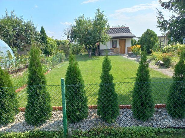 Działka rekreacyjna ogródek działkowy teren niezalewowy ul Gliwicka