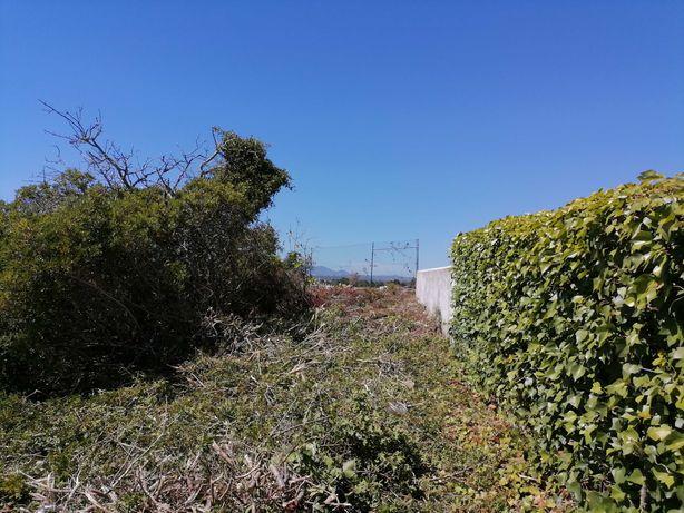 Manutenção de jardins e limpeza de terrenos