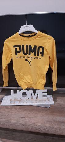 Bluzeczka Puma na 5-6 lat