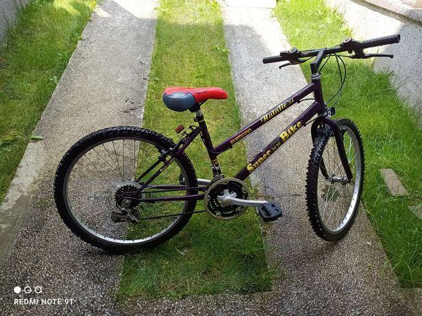 Rower 24 rozmiar