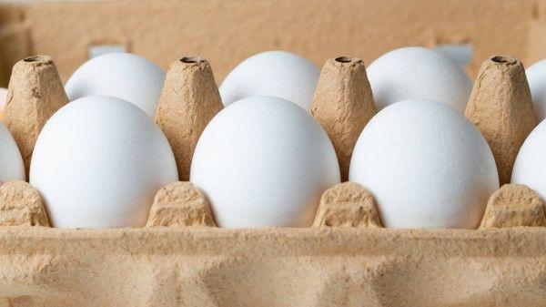 Sprzedam jaja z wolnego  wybiegu