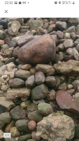 Kamienie polne oddam
