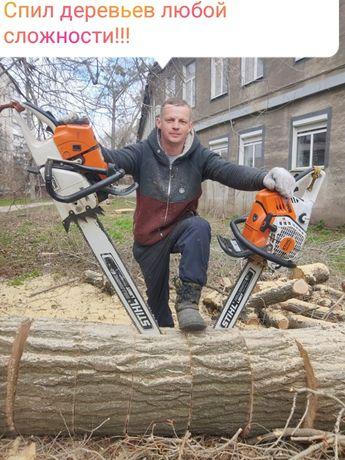 Спил деревьев любой сложности !!!