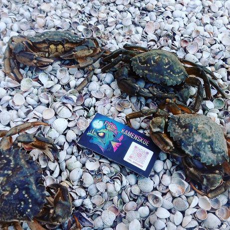 Живой краб, Варёная азовская криветка, Живой рак, Вяленая рыба