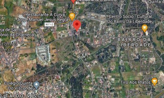 Loja em Coimbra, Santa Cruz