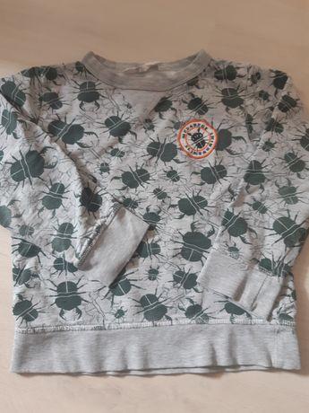 Bluza hm r. 4-6 dla chłopca