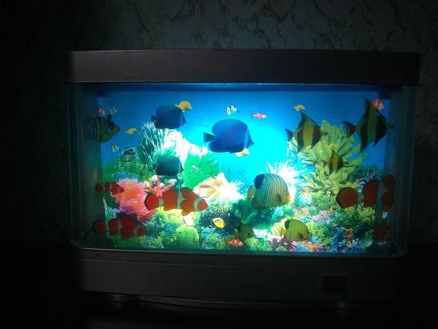 Akwarium lampka , ruchome rybki