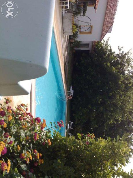 Casa de Alpiarça -casa com piscina