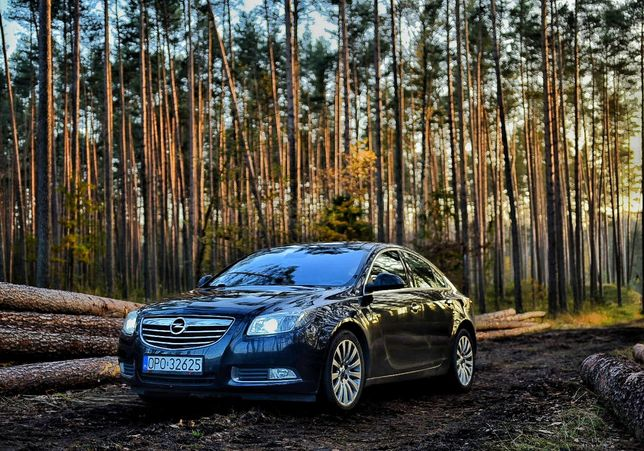 Opel Insignia 2011 2.0 CDTI 160KM