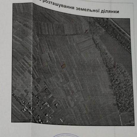 Земельна ділянка (10 сот.)