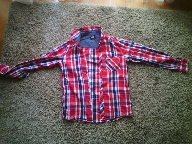 camisa rapaz tiffosi