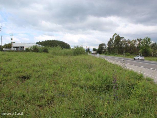 Terreno Industrial com Projeto Aprovado para Armazém na R...