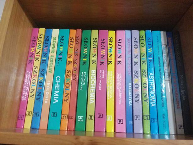 Szkolne słowniki różnorodne