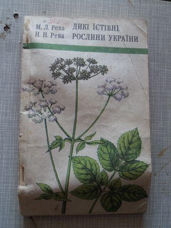 Дикі їстівні рослини України