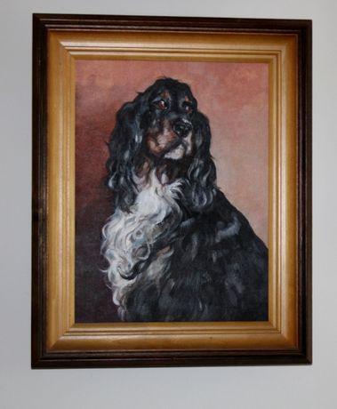 Portret Psa lub Kota