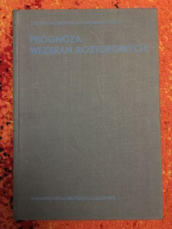 PROGNOZA WEZBRAŃ ROZTOPOWYCH 1977 tanie książki techniczne