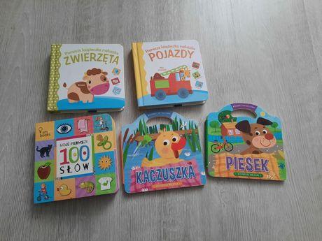 Zestaw 5 książeczek  dla najmłodszych