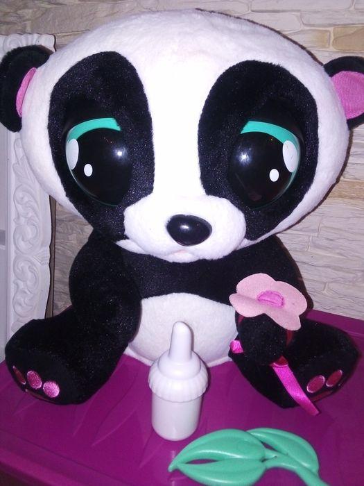Jojo Panda Krzyżanowice - image 1