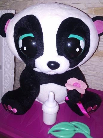 Jojo Panda